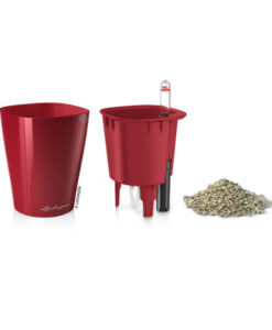MINI DELTINI - SCARLET RED high glass
