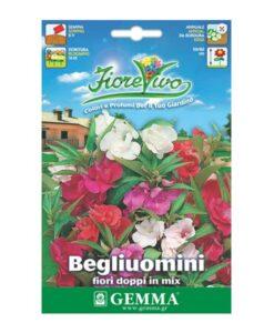 Σπόροι Βαλσαμίνα με διπλό άνθος σε διάφορα χρώματα