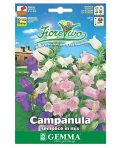 Καμπανούλα μονή σε διάφορα χρώματα λουλουδιών