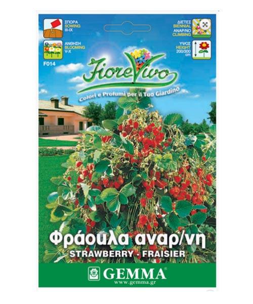 Φράουλα αρωματική αναρριχώμενη