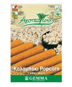 Καλαμπόκι pop corn