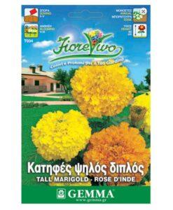Κατηφές με διπλό λουλούδι