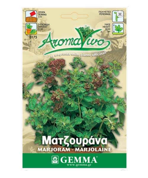 Σπόροι Μαντζουράνας |