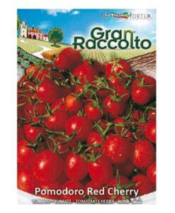 Τομάτα μικρή cherry